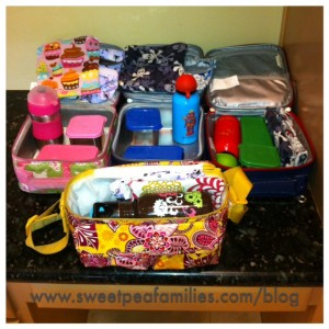 A mix of Vera Bradley, PBKids, and Itsy Ritzy.  Since switching over to reusable containers we hardly ever use plastic baggies - don't miss them at all!