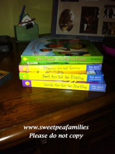 Books that are in our room for a peaceful family training at the end of the day...we hope the ideas seep in over night!