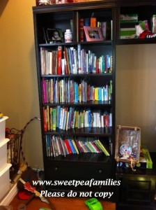 Playroom bookshelf