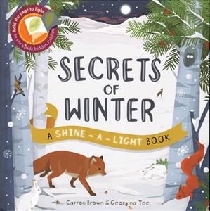 0009698_secrets_of_winter_300