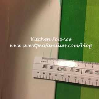 Kitchen Science02
