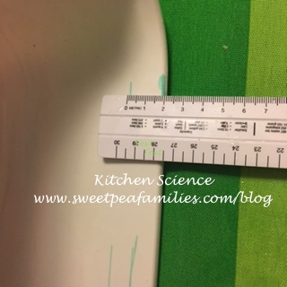 KitchenScience01