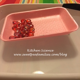 KitchenScience12